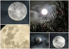 Wasn't the moon magical last night!