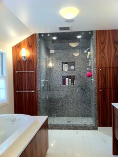Shower Niche Ideas Bathroom Contemporary with Bathroom Storage Ceiling Lighting