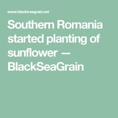 Southern Romania started planting of sunflower   — BlackSeaGrain