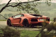 Here We Can See The Aventador In The Wild