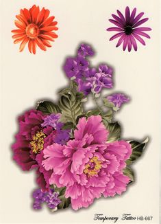 rosa Daisy Love Sweet Baumwollstoff Surprise Blumen