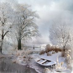 The fields are white already unto harvest.there are treasures hidden in the snow! Winter Photography, Nature Photography, Landscape Photography, Winter Love, Winter Magic, Winter's Tale, Winter Scenery, All Nature, Snow Scenes