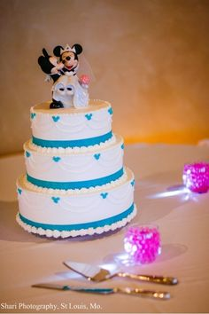 Disney wedding pictures...  Some people find it corny, I think it's cute!