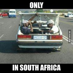 Meanwhile in South Africa African Jokes, Meanwhile In, Out Of Africa, 10 Picture, Best Funny Pictures, Funny Pics, Amalfi, South Africa, Laughter