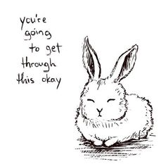 You're going to get through this // Rabbit