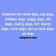 Quotes About A Girl And Her Dog Quotes About A Girl And Her Dog With Images  Pawsitive Quotes About