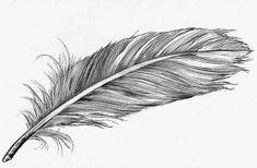 Feather tattoo idea Más