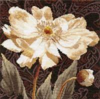 2-18 Белые цветы. В объятиях света
