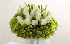 Download wallpapers white tulips, hydrangea, beautiful bouquet, spring flowers, bouquet of tulips