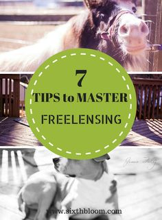 7 Tips to Master Freelensing, Photography Tips, Photography Technique, Freelensing Tutorial