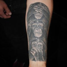 Instagram media iskonno_ru - regram @peterhilgersart Monkeys all healed. Done about 8 month ago  #tintenmanufaktur #peterhilgersart #tattoo #tattooart #seenoevilhearnoevilspeaknoevil #monkeys #3monkeys #aachen #tattedskin