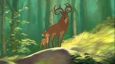 Bambi II also known as Bambi and the Great Prince of the Forest is a 2006 American animated drama film directed by Brian Pimental and produced by DisneyToon Bambi Disney, Old Disney, Disney Fan Art, Disney And Dreamworks, Disney Style, Disney Pixar, Bambi Art, Bambi And Thumper, All Disney Movies