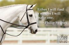 20 Motivational Quotes to Use at the Barn - The Plaid Horse Magazine Rodeo Quotes, Equine Quotes, Equestrian Quotes, Song Quotes, Smile Quotes, Wisdom Quotes, Qoutes, Pretty Horses, Horse Love