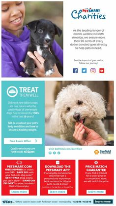 PetSmart Black Friday Preview 2018 Ads and Deals Browse the PetSmart Black Friday Preview 2018 ad scan and the complete product by product sales listing.  #petsmart #blackfriday Black Friday, Coupons, Ads, Coupon