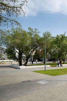 Универсальный ландшафтный конструктор для городской среды, предназначенный для оформления публичных пространств игородских зон отдыха. Line, Sidewalk, Collection, Fishing Line, Walkways, Pavement, Curb Appeal