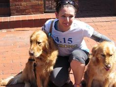 Comfort Dogs Return For Boston Marathon, Reuniting With Old Friends