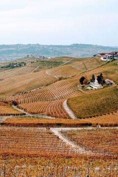 Uma das mais nobres regiões vinícolas da Itália, é aqui que se produz o Barolo. Mas, o passeio vai muito além disso. Descubra o Piemonte.  #Piemonte #Piedmont #Italia #Italy #Vinho #Wine