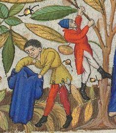 Horae ad usum romanum.  Date d'édition :  1401-1500  Latin 1156B  Folio 137r