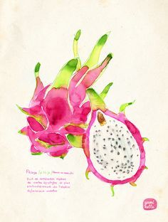 Dragon fruit - by Yuminette