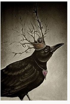 Crow/Raven are keepers of spiritual wisdom and teachers of mysticism. Crow/Raven energy transforms by helping us understand our deep inner self and removes the karmic conditions which holds us back. Crow Art, Raven Art, Bird Art, Crow Or Raven, The Crow, Quoth The Raven, Image Beautiful, World Poetry Day, Street Art