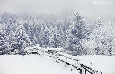 Adrian Petrisor - Photography: Iarna-n Apuseni Estes Park, Romania, Winter Wonderland, Snow, Country, Travel, Outdoor, Beautiful, Heart