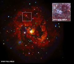 SN 1957D in M83: X-Rays Discovered from Young Supernova Remnant