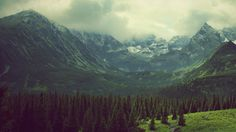 green mountains clouds landscapes nature trees pine trees photo filters tatra mountains tatry - Wallpaper (#2688128) / Wallbase.cc