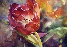 Tulip, watercolor Michaela Rohrer