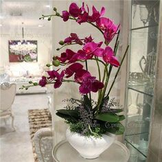 50 pcs/bag orchid seeds bonsai Butterfly phalaenopsis orchid potted flower seeds perennial garden plant for home garden flowers