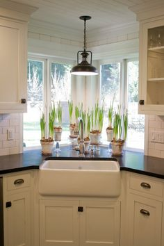 Love the farm style sink, natural light, and space for plants.