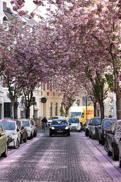 Bonn, Germany - 10 Streets That Will Actually Warp You Into A Different Place