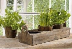 Wooden Garden Plant Tray - Three-sectioned Tray for Herbs And Flowers Product SKU: PL221917 by PSW- Planters and Pots. $19.97. Product SKU: PL221917Weight: Approximately 4.44 lbs.Use: Outdoor use in your garden or patio. Perfect for small urban gardens. Material: Wood. Shipping & Shipping ChargesPier Surplus reserves the rights to choose the final delivery method for items shipping ground. We ship most orders the same day if they're received before 12:00 noon CST.. Pier Surp...