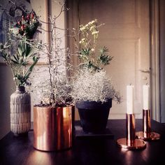 Stilleben with plants and copper. Home Styling nordic interior