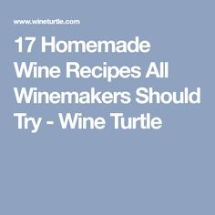 17 Homemade Wine Recipes All Winemakers Should Try - Wine Turtle