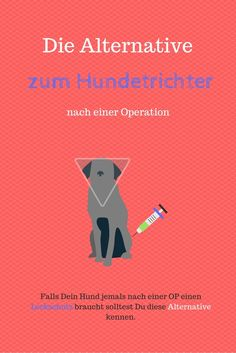 Hundetrichter Alternative