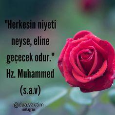 Muhammed Sav, Circumcision, Allah Islam, Hadith, Cool Words, Cool Designs, Messages, Rose, Instagram