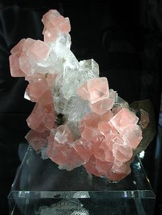 Fluorite with Quartz - Goschener Alps, Goschener Valley, Uri, Switzerland