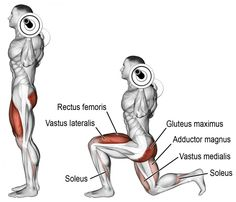 Another brilliant compound exercise for developing unilateral lower-body functional strength! Target muscles: Quadriceps (Vastus Lateralis, Vastus Intermedius, Vastus Medialis, Rectus F Muscle Fitness, Fitness Tips, Fitness Motivation, Squats Fitness, Butt Workout, Gym Workouts, Training Workouts, Compound Exercises, Weight Training