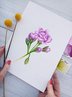 Original Watercolor Flower painting. Botanical original watercolour art, now available also as a Fine art Print.