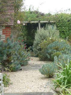 Cotswold gravel, York stone, Euphorbia