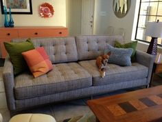 Sullivan loveseat in Delight Lemon
