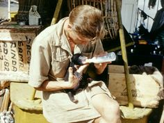 David Attenborough at BBC to air his first wildlife. David Attenborough at BBC to air his… Rainforest Animals, Zoo Animals, Funny Animals, Malayan Sun Bear, Richard Attenborough, Indian Funny, Image Caption, African Animals, Borneo