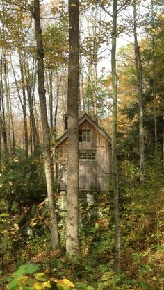Cabin on boulder foundation in Vermont. Contributed by Todd...