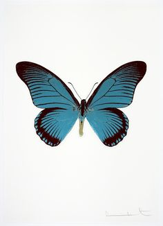 Available for sale from Other Criteria, Damien Hirst, The Souls IV - Frost Blue - Raven Black - Silver Gloss Foilblock print, 28 × 22 in Butterfly Frame, Butterfly Print, Blue Raven, Purple Lipstick, Damien Hirst, London Museums, Red Poppies, Black Silver, Topaz