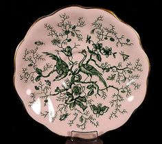 Vintage Coalport Cairo Saucer Only Pink Green Birds Tree Bugs AD 1750 England