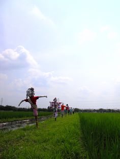 Scarecrows of the rice field