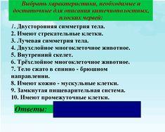 Учебник по истории всемирной о.и шалагинова б.б шлангов читать