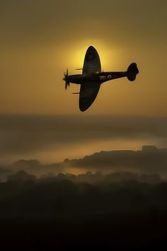 .Spitfire. One of the most graceful and beautiful aircraft of WWII.