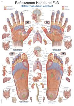 How to give a great massage Pictures) Herbal Remedies, Natural Remedies, Health And Wellness, Health Tips, Health Fitness, Health Benefits, Acupuncture, Fitness Workouts, Massage Therapy