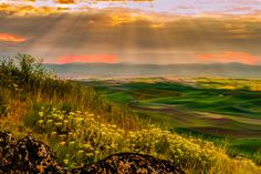 Magic Lighting over The Palouse - Taken from rolling hills at sunrise. The Palouse was very inspirational for me. It surrounded by the rolling wheat fields. Was spectacular scenic.